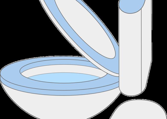 toilette-chasse-d'eau