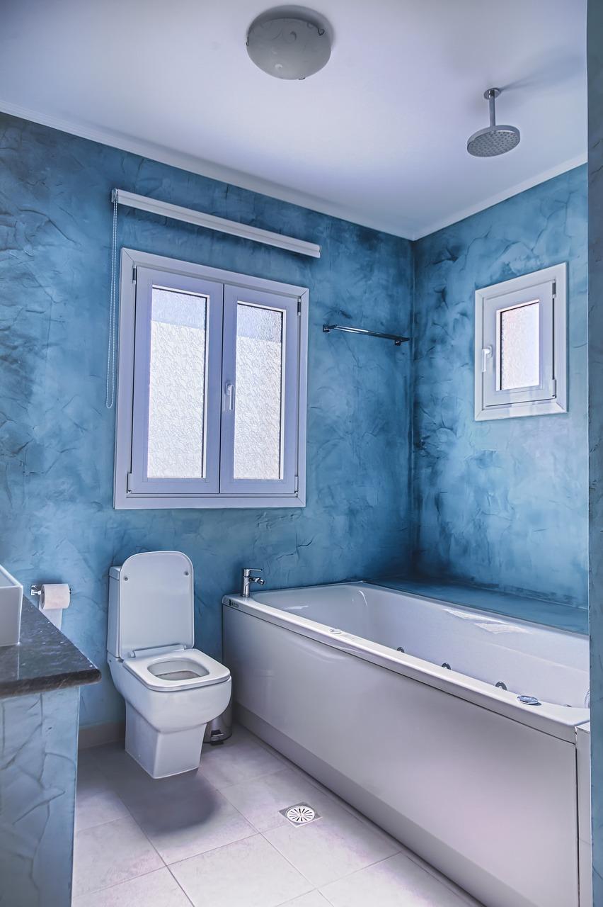 salle-de-bain-maxi